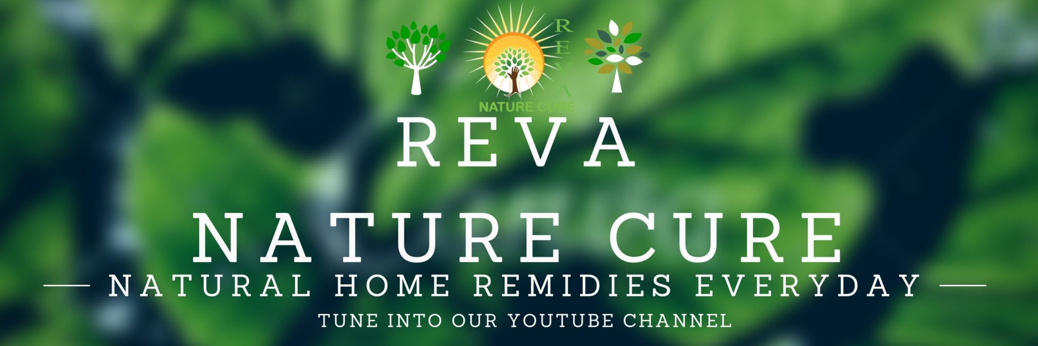 Reva Nature Cure Vadodara Gujarat